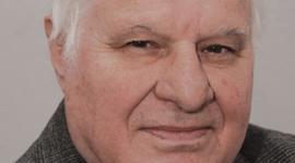 Jaroslav Kojzar, mariánský sloup, petice